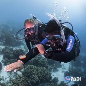 Curso-PADI-Navegación-Subacuática