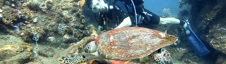 Buceando-con-tortuga-marina-en-Bali