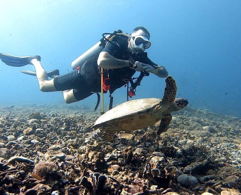 Sergi-buceando-con-tortuga-en-Bali