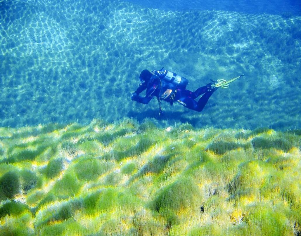 Submarinismo-en-ríos
