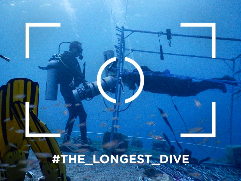 La-inmersión-más- larga-de-la-historia