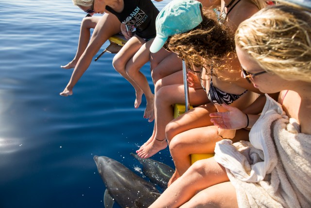 Amigas-avistando-delfines